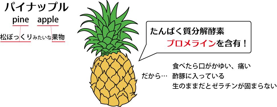 パイナップル_140811