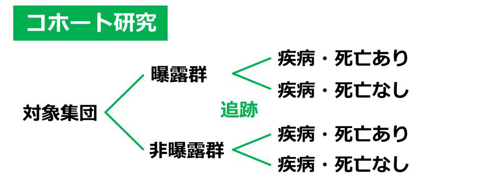 コホート研究_151209