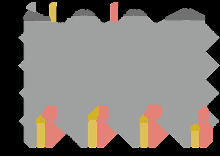 国家試験の合格率の推移2