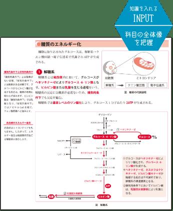 SGS専用テキスト