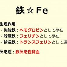 鉄_20150128