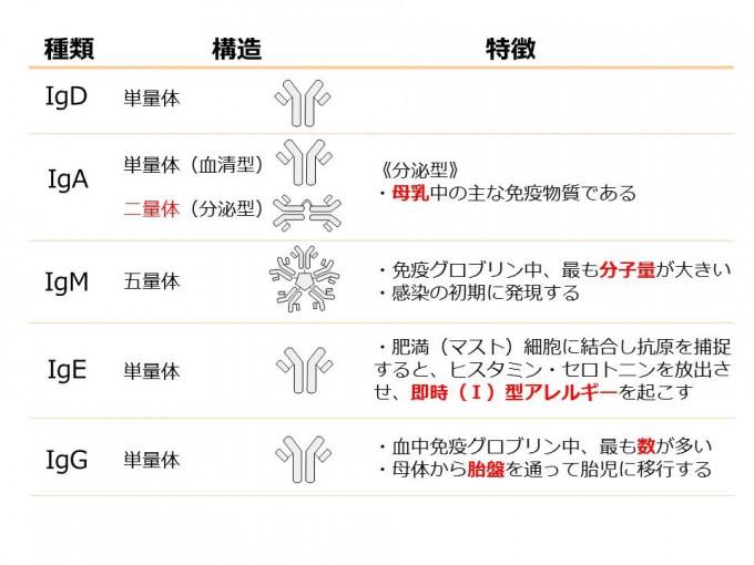 コラム免疫_20151216②