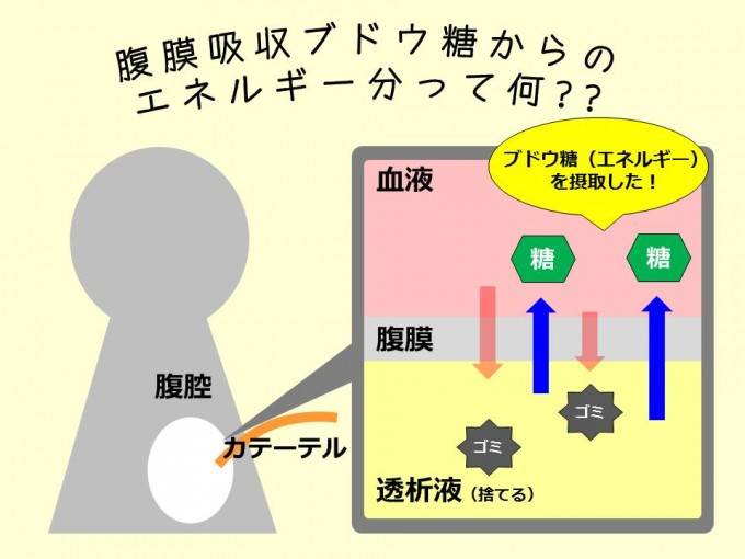 腹膜透析におけるエネルギー_20160224