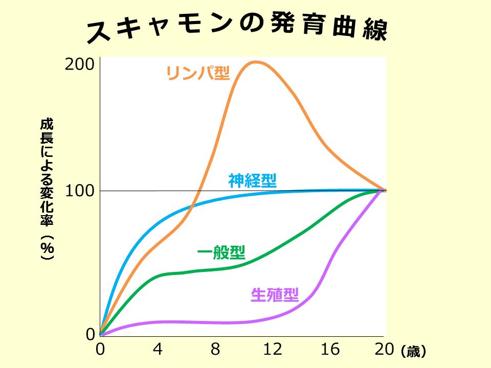 スキャモンの発育曲線