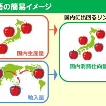 食料需給表_用語_170607 (1)